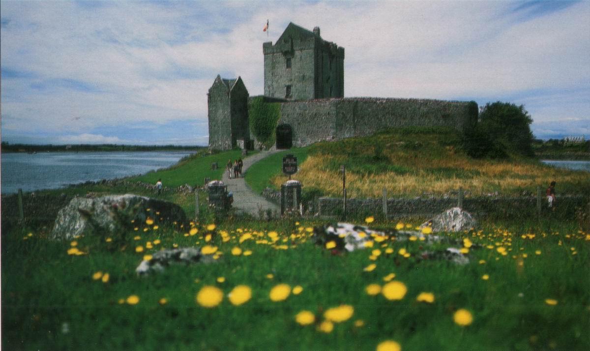 trente chevaliers normands la conqu te de l 39 irlande. Black Bedroom Furniture Sets. Home Design Ideas